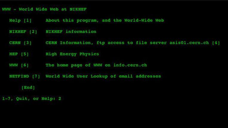 Nikhef. de allereerste Nederlandse website (1992). Beeld