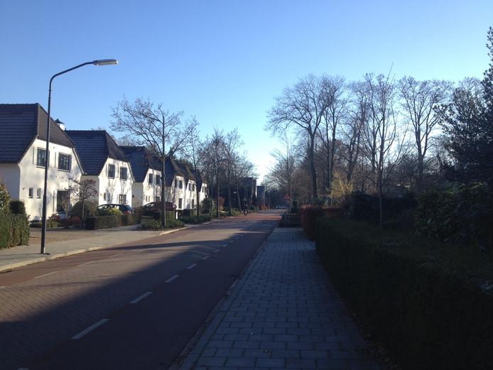 De Aert Heymlaan in Vught.