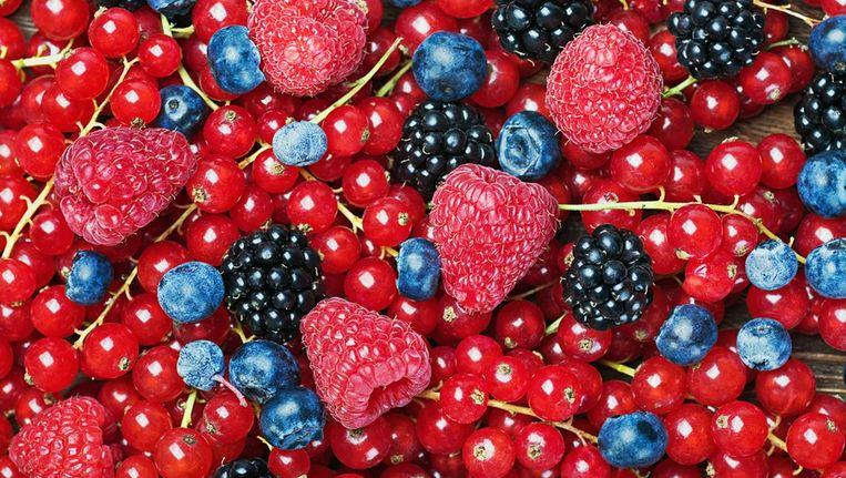 Bosbessen, aalbessen, bramen en frambozen zijn populair omdat ze bomvol antioxidanten zitten Beeld Colorbox