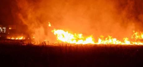 Grasveld gaat in vlammen op bij brand in Bergen op Zoom