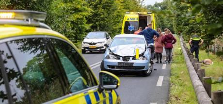 Hert afgeschoten na botsing in Laag-Soeren; automobilist gewond naar ziekenhuis