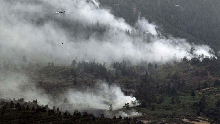 De brandweer heeft grote moeite de bosbranden bij Colorado Springs onder controle te krijgen. Beeld reuters