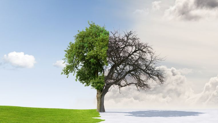 'De overgang is een transitie van de levensfase die gekenmerkt wordt door nut, naar de fase van nutteloosheid.' Beeld thinkstock