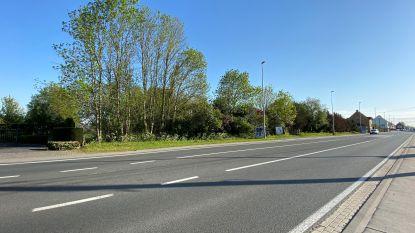Strijkt supermarktketen Jumbo straks neer langs de Kortrijkseweg in Waregem?