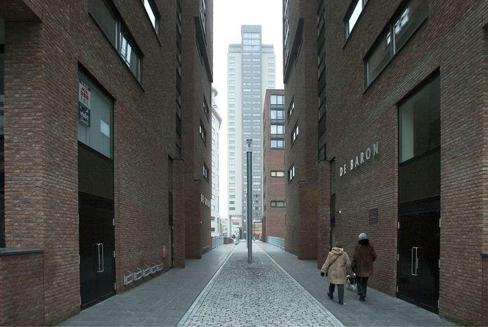 Het Regentenkwartier aan de Lichtstraat/Willemstraat in Eindhoven op een archieffoto.