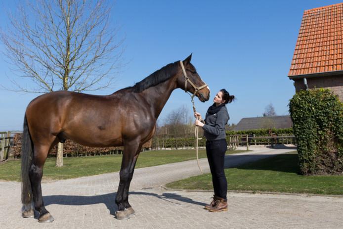 Topmodel Lonneke Engel met haar paard U2.
