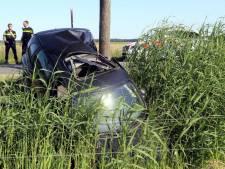 Automobilist opgepakt na botsing tegen boom in Cromvoirt
