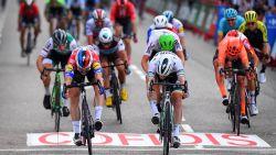 Jakobsen sprint naar zege in slotrit Vuelta, Roglic eindwinnaar