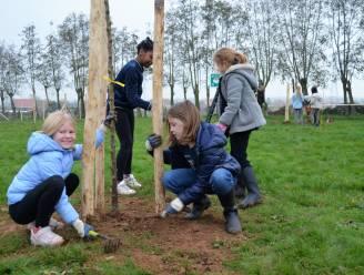 1.000 planten voor GO! basisschool Ter Elzen in Wijtschate