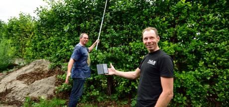 Op pad met nestkastencontroleurs: 'Die torenvalken zijn grillig in hun gedrag'