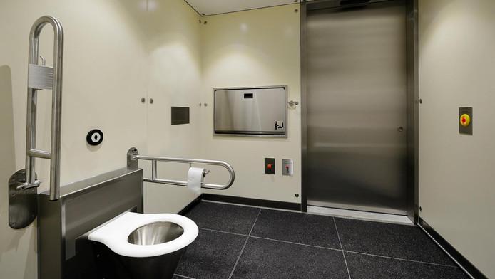 De nieuwe wc.