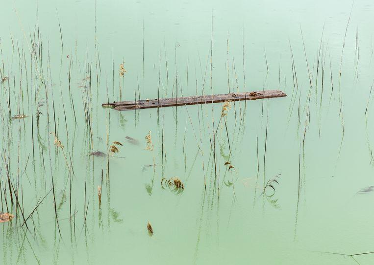 Unseen at the Gallery. Beeld Natascha Libbert / Galerie Vriend van Bavink