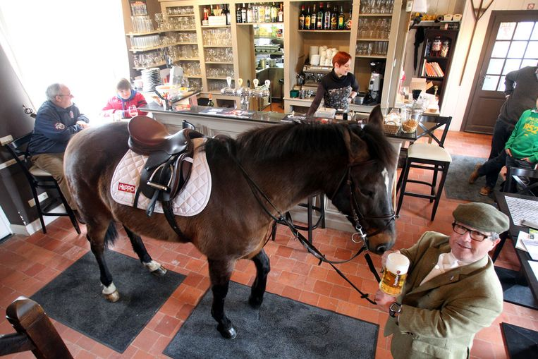 Koetsier en paard samen op caf binnenland nieuws hln for Paard aan huis te koop