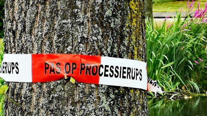 Overal in het land waarschuwen gemeenten met rood-witte linten voor de rupsen.