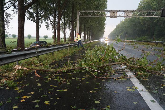 Takken op de A27  tussen Oosterhout en Hooipolder.