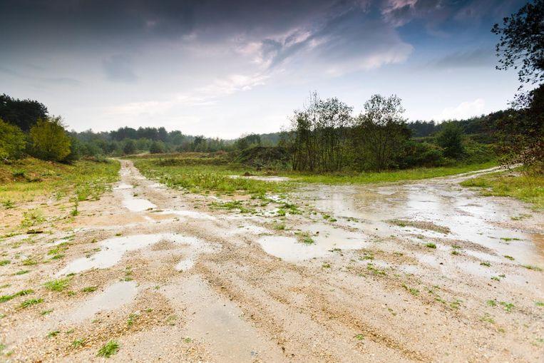 Het crossterrein van Maaseik ging vorig jaar tegen de vlakte. Momenteel loopt er een onderzoek naar bodemvervuiling. Krijgt de stad van Stefan Everts ooit nog een alternatief?