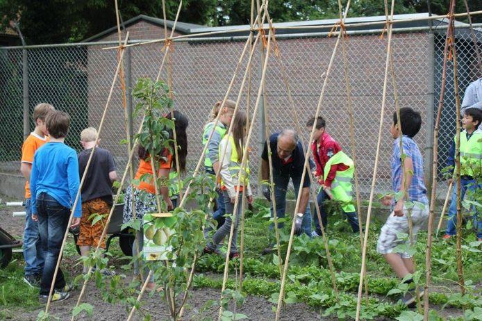 Vrijwilligers van de Samentuin geven kinderen van de nabijgelegen school regelmatig uitleg over de moestuin.