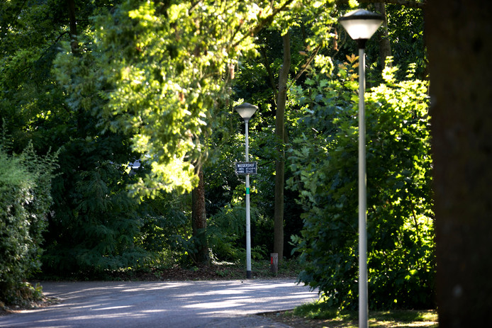 Straatverlichting aan de Wiegershof in Deurne wordt ook vervangen