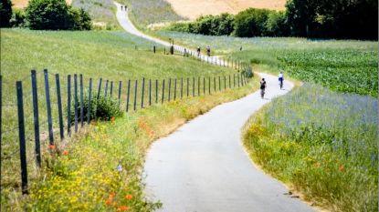 De Brabantse Pijl krijgt eigen fietsroute doorheen Dijleland