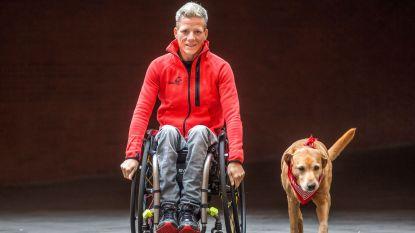 """Honden van Marieke Vervoort verhuizen naar begeleidster en familie: """"Wat een droomkoppel"""""""