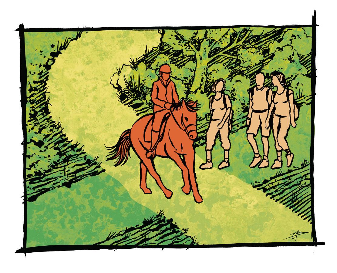 Situatie 2:  Een groepje wandelaars loopt op een ruiterpad (dat mag).  Wat moet er gebeuren? Antwoord onderaan dit artikel.