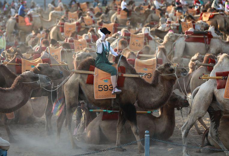 Een toerist maakt een tochtje op een kameel in de woestijn bij de Chinese stad Dunhuang.  De stad in de provincie Gansu, in het noordwesten van China, geldt als een hoogtepunt van de zijderoute.  Beeld AFP