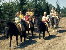 Pony's attractiepark Slagharen verhuizen naar Ponyparkcity