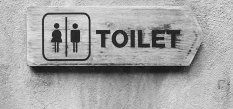 Openbaar toilet bij Het Lido? Waalwijk vindt het te duur