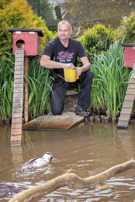 Hilgert heeft een gigantisch vogelparadijs naast zijn huis: 'Uit de hand gelopen hobby'