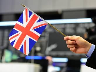 Meer dan 115.000 Britten eisen tweede referendum: website petitie crasht