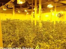 Hennepteam politie stuit in Dordts bedrijfspand op duizend wietplanten