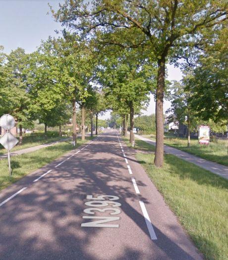 Extra geld voor natuur in Hilvarenbeek, tegenstanders staken de strijd tegen bomenkap voor N395