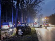 Auto met gezin botst tegen boom in Sint Hubert
