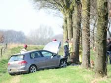 Bomen weg voor veiliger route