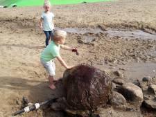 Spelen in Winterswijk tijdens de herfstvakantie alsof het zomer is