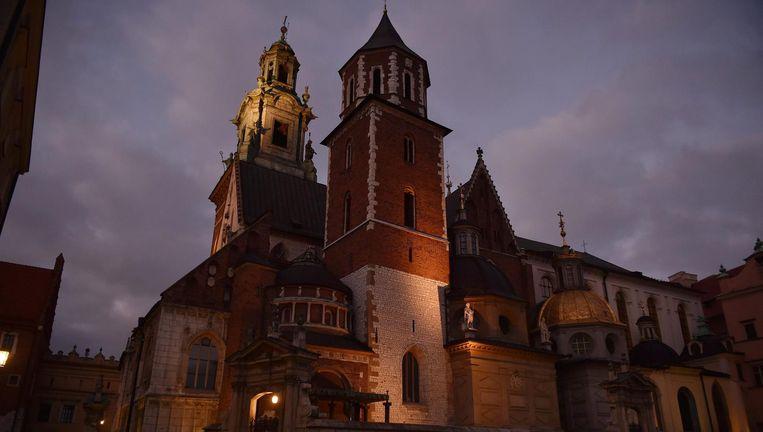 De Wawel-kathedraal in Krakau Beeld ANP