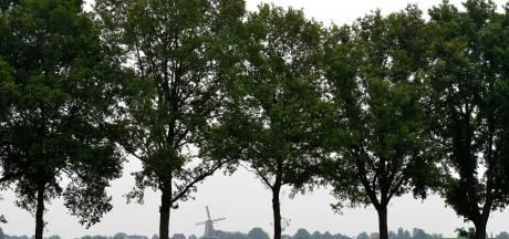 19-jarige  vervolgd voor seksueel misbruik zeven minderjarige meisjes in Achterhoek