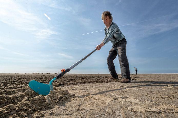 Nico Laan maakt zandtekeningen op het strand bij Monster