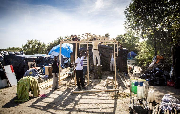 De 'jungle' van tenten in Calais. Beeld Freek van den Bergh