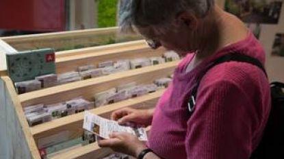 Antwerpse zadenbibs openen dit weekend de deuren (en daar zullen wilde bijen blij van worden)