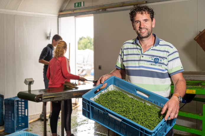 Aart-Jan Bil van De Schorreblomme is één van de bedrijven die meedoet aan Boer op een andere Toer van Agrarisch Schouwen-Duiveland