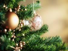 De kerst van het verstand