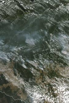 Braziliaanse president: ngo's hebben bosbranden Amazonegebied gesticht
