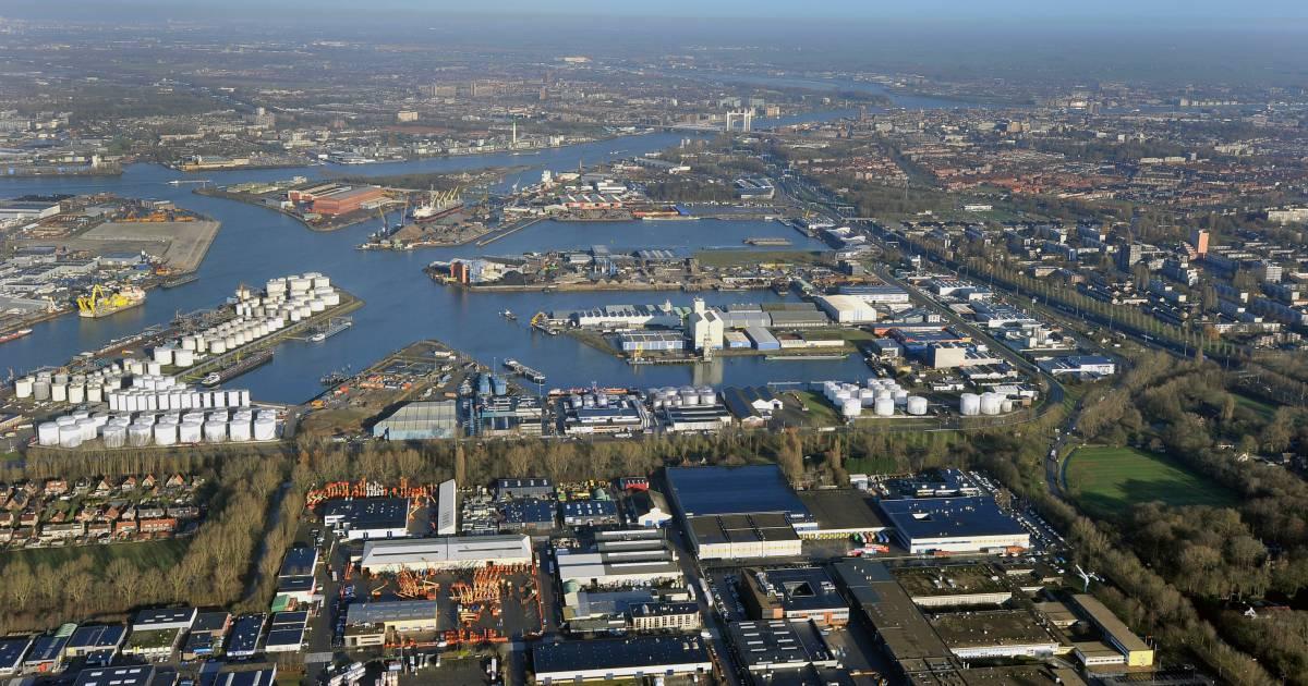 Regionieuws | Dordrecht - cover