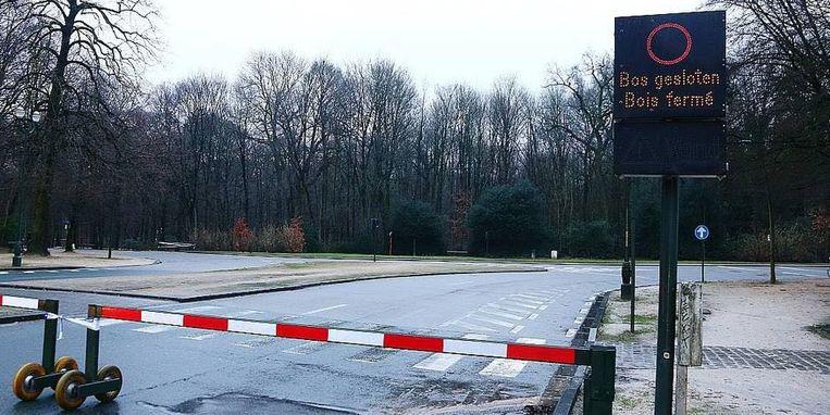Het Ter Kamerenbos in Brussel wordt uit voorzorg gesloten tot morgenmiddag 12 uur.
