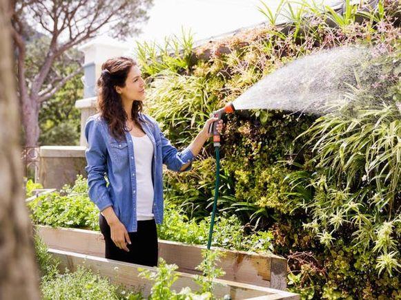 Geef gericht water in plaats van je hele tuin te besproeien, sproei je gazon niet onnodig en zeker niet op het warmste moment van de dag.