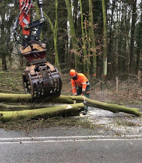 Video | Werk Heerderweg maandag hervat