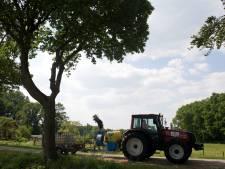 Eikenprocessierups jaagt Achterhoekse en Liemerse gemeenten dit jaar op enorme kosten