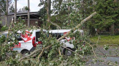 Twee postauto's op parking sorteercentrum Kortrijk onder boom bedolven door rukwinden