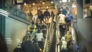 """Stormloop voor nieuwe collectie in IKEA Gent: """"Dat groen tapijt moet ik absoluut hebben"""""""